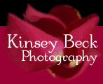Kinsey Beck Photography